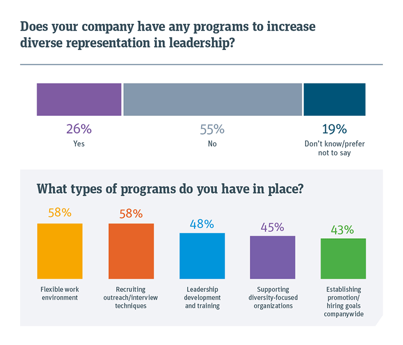 Chart showing if your company has any programs to increase diverse representation in leadership