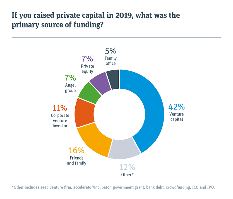 Pie chart showing primary source of funding for private capital that was raised in 2019