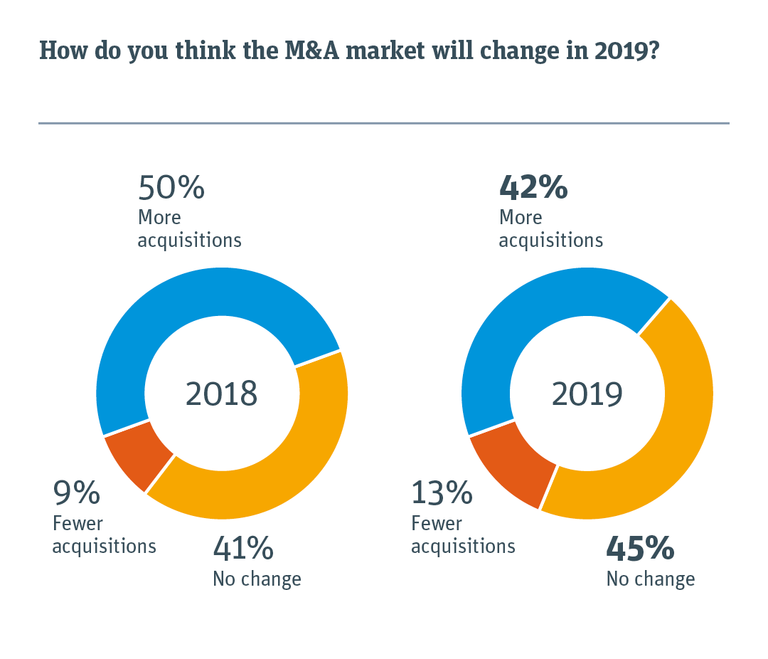 Pie chart illustrating how the M&A market will change in 2019.